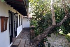 olivo terraza restaurante bajada apartamentos